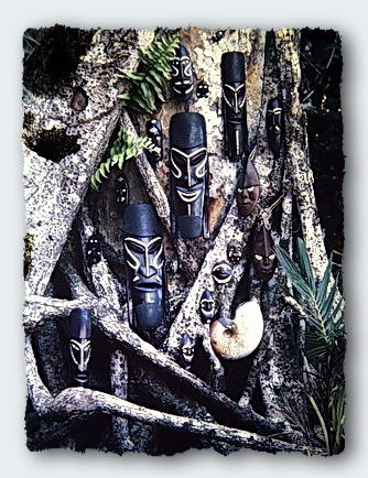 Masks from the Solomon Islands on the roots of a Banyon tree.