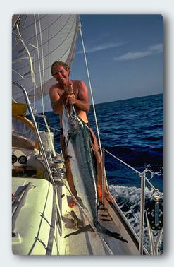 Catching a big billfish can be dangerous. They really do know how to use that needle-sharp bill.