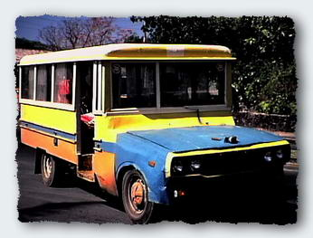 American Samoan buses are built on the frames and front ends of a huge variety of cars and trucks. They have got to be one of the best public transport systems in the Pacific.