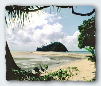 Nukutapu, the magic island, a place of power.� http://www.this-magic-sea.com/order.html